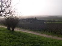 Domaine de Beausejour 2