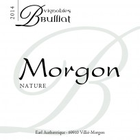 Bulliat - Morgon Bio 2013