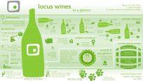 locus-infographic-consumer